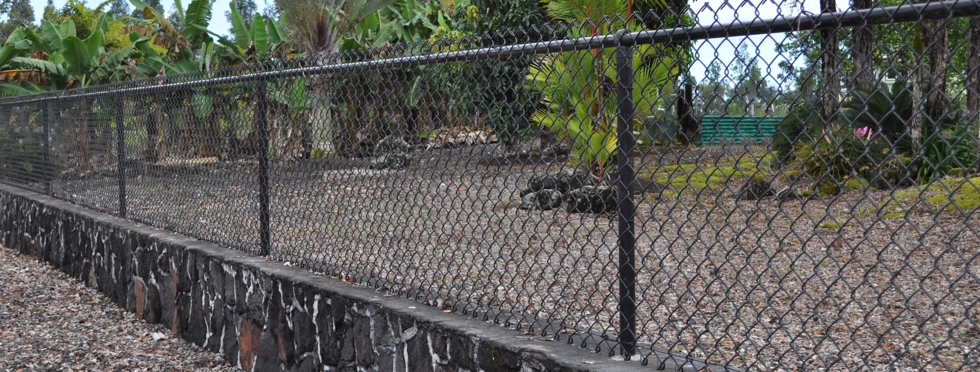 Vinyl-Coated-Chain-Link-Fence-e1427583073778